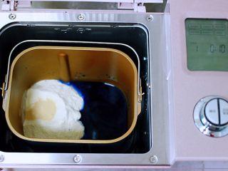 蝶豆花火腿肠花卷,把称重的中筋面粉和白糖,酵母和蝶豆花水倒入东菱面包机桶里,启动面包机的和面程序开始和面。