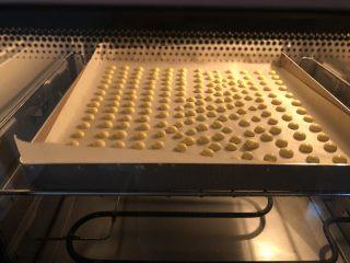 蛋黄溶豆,挤蛋黄湖的时候就可以100度上下管预热烤箱了,挤好后放入烤箱100度15分钟左右,具体时间根据溶豆的大小和自家烤箱的脾气来。