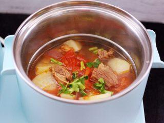 番茄牛肉炖土豆,大火煮沸关火,撒上香菜段即可。