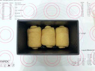 中种胡萝卜吐司,码入吐司模中,盖上保鲜膜室温下(30-35度)进行发酵。