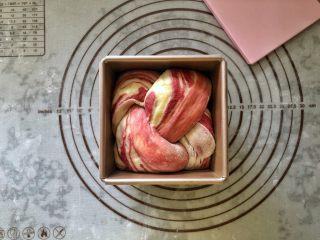 女王大理石纹吐司,发酵至八、九分满模,盖好盖子。