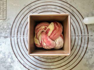 女王大理石纹吐司,两端压在底部放入学厨水立方吐司盒中进行二次发酵。