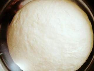 梅菜猪肉包,把面粉和成光滑的面团即可,再盖上保鲜膜进行常温发酵