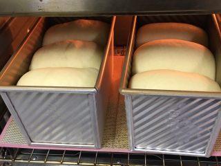 奶酪双吐司,发酵至九分满,盖上盖子。