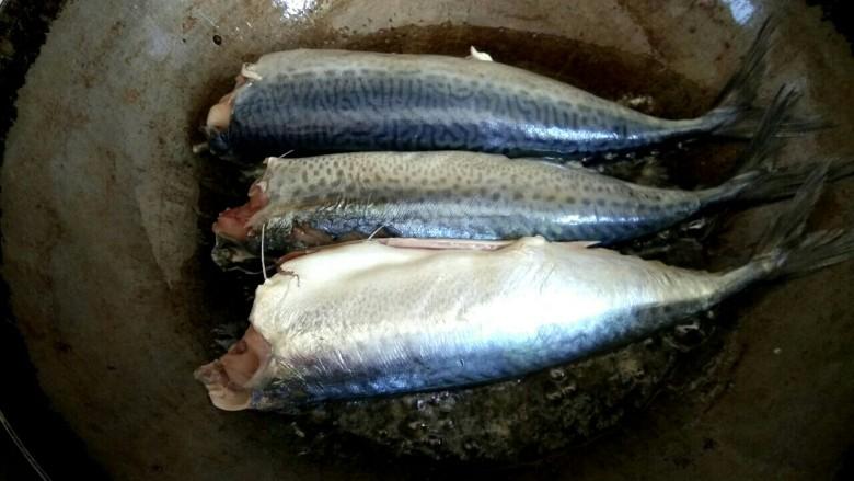 香辣鲅鱼,把鲅鱼放到锅中煎一会儿