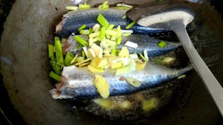 香辣鲅鱼,放入葱姜蒜