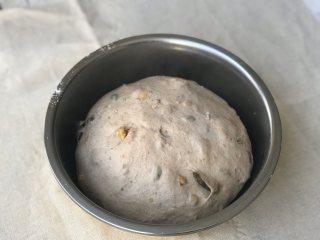 全麦果仁餐包,进行一发:25-28度的温度,75%的湿度醒发至两倍大,大约一小时。