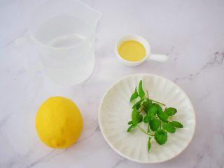 柠檬薄荷饮,准备好材料