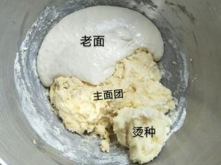 超软拉丝北海道土司(2个),加入准备好的两个酵种然后盘它!