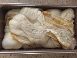 红薯吐司,盖盖儿或保鲜膜醒发至快要满模。