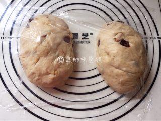全麦蔓越莓坚果软欧,均分成两份后,轻拍排气,盖上保鲜膜松弛10分钟。