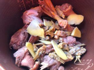 海参番鸭汤,番鸭肉焯好以后用冷水冲凉,用夹子清理掉鸭肉上的细毛,清洗干净放入锅里,再放入姜片和蛏干。