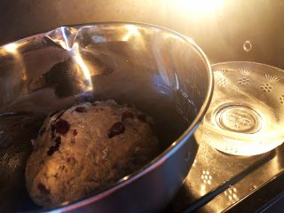 蔓越莓全麦面包,7.进行发酵,尽量放在温暖的地方,我的方法就是放在烤箱里面,旁边放一碗开水,原理就是让面团呆在温暖湿润的环境里,让酵母菌发酵起来