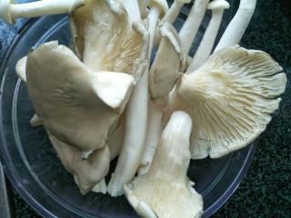 菌菇抄牛肉,平茹洗干净