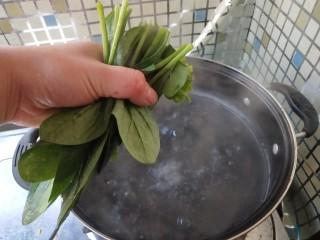 菠菜豆渣饼,烧开水,焯一下。 (主要去除会影响钙吸收的草酸)