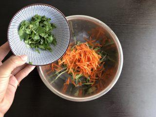 酸辣麻酱拉皮,将黄瓜胡萝卜,香菜倒入拉皮中