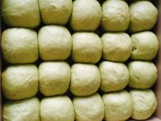 青蛙🐸挤挤包,材料A二次发酵到两倍大时候从烤箱取出,喷水;