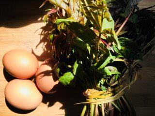 香椿炒鸡蛋,准备食材