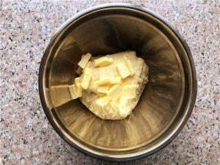 巧克力核桃面包,放入切块的黄油,继续揉面。