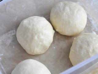 网红奶昔面包,分割成四份,松弛10分钟后,继续滚圆,放入烤箱中发酵45分钟左右,烤箱里同时要放入一碗开水。