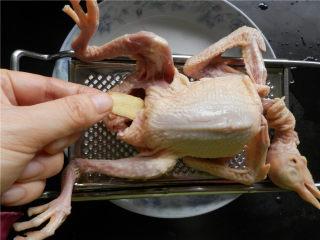 砂锅烤乳鸽,乳鸽肚子里塞2片姜和葱。