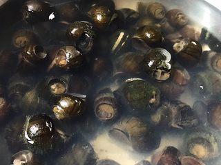 五花肉香焖田螺,食材处理:  市场买回来的田螺泡水半天 吐出泥土 (市场可以帮忙剪去田螺顶盖