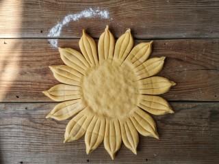春暖花开,把每三份末端捏起合在一起,圆饼中间部分按压下去做成葵花盘子造型。