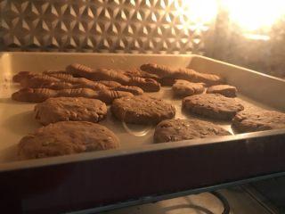 果仁姜饼,将冷藏好的面团揉成一个个小圆饼。