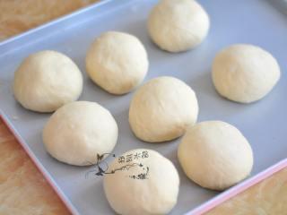 红豆奶油餐包,取出发酵好的面团,排气后分割成8份,滚圆松弛10分钟。