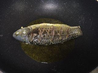 鲫鱼汤,放入鱼油炸