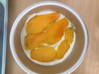 千层芒果蛋糕,一层芒果。