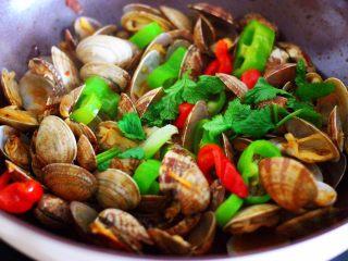 辣爆花蛤,大火翻炒至花蛤口都张开,青椒和红椒断生变色的时候,撒上香菜段即可关火。