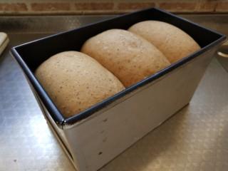 全麦红糖吐司,发酵至9的分满即可烘烤