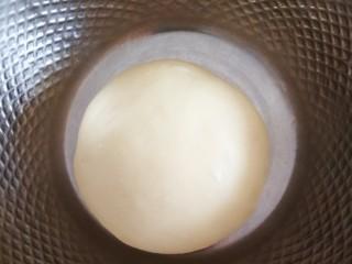 椰蓉面包,放温暖处发酵温度28度左右,湿度85最佳。