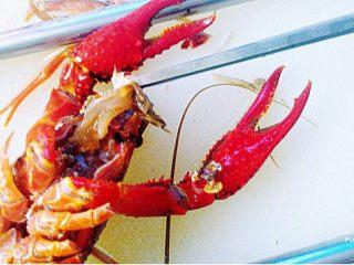 辣卤小龙虾,取出这块脏东西,无需把头摘掉,不拔虾线,肉质会更弹牙