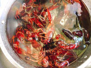 辣卤小龙虾,将小龙虾放一大盆里注入水,放水里养一个小时,让它吐出脏东西
