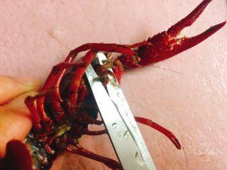 吮指蒜蓉小龙虾,龙虾选活泼一点,用清水泡制1个小时左右,让它吐出脏东西,然后然后剪刀剪去一点虾头,用剪刀把虾头里的内脏挑出来,虾线我习惯吃时再抽,因为现在抽掉会影响它的口感