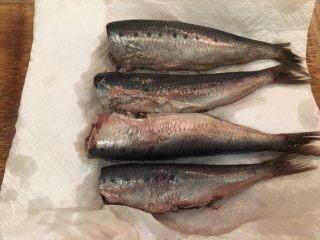 梅子蒸沙丁鱼,将泡好的沙丁鱼取出,用厨房纸巾擦干水分