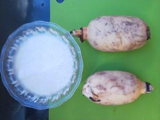 红糖糯米藕,准备所需食材。藕两节。藕不宜选太长的。煮的时候锅放不下。糯米大约80克