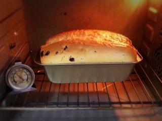 蔓越梅玉枕蛋糕,蛋糕蓬发中。