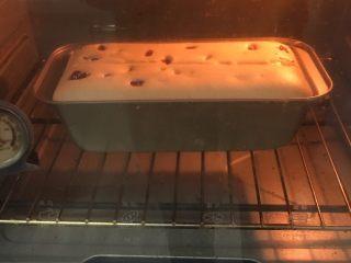 蔓越梅玉枕蛋糕,烤至10分钟左右,用刀划一刀。