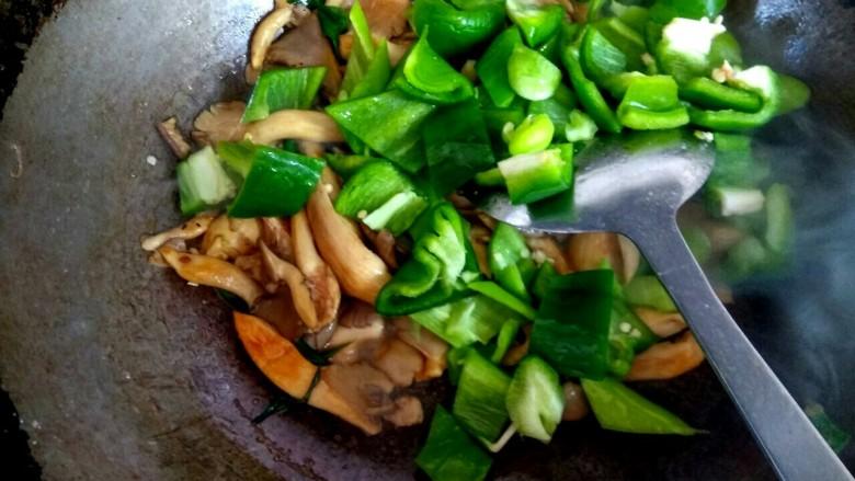 蘑菇尖椒炒鸡蛋,加入青椒尖椒翻炒