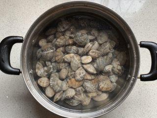 辣炒花蛤,水中放少许盐、搅匀了放入花蛤,让其吐沙