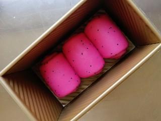 超级软绵的火龙果吐司(一次发酵),依次卷好放入吐司盒,盖上保鲜膜,放置在温暖处进行发酵