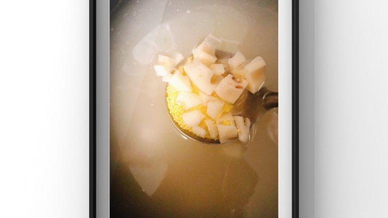 银耳苹果莲藕粥,莲藕去皮切小块和小米一起先煮!调至煮粥功能总用时1个半小时!