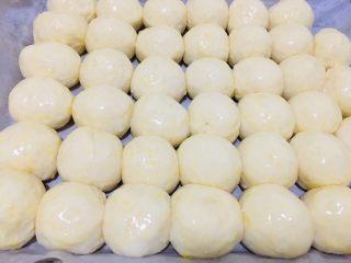 蜂蜜小面包,酵发两倍大刷一层蛋液。