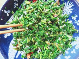 #爽口凉菜#凉拌野菜水芹菜,搅拌均匀,装盘