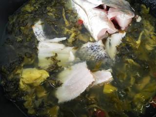 酸菜鱼,水沸腾后加入鱼头鱼尾