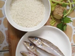 沙丁鱼粥,材料:沙丁鱼,米,姜,芹菜