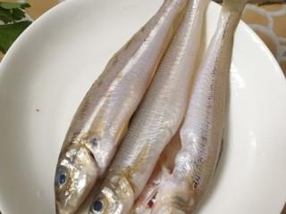 沙丁鱼粥,沙丁鱼,去掉鳞和内脏(买鱼的时候可以在市场杀,省略这步骤)